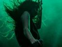 Zielone światło dla Lorde